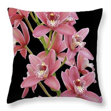Pink Cymbidium Orchid Throw Pillow