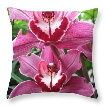 Pink Cymbidium Orchids Throw Pillow