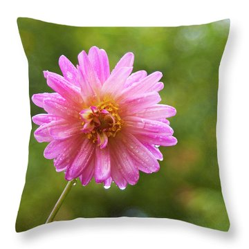 Pink Dahlia 1 Throw Pillow