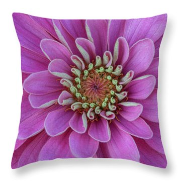 Throw Pillow featuring the photograph Pink Dahlia by Dale Kincaid