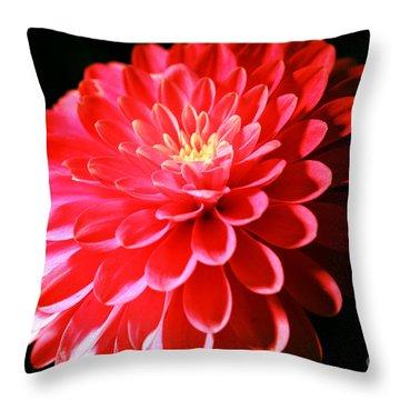 Pink Dahlia1 Throw Pillow