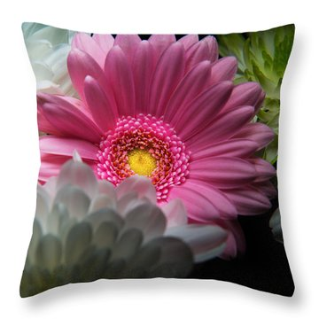 Throw Pillow featuring the photograph Pink Daisy Surrounded By White Dahlias by Dennis Dame