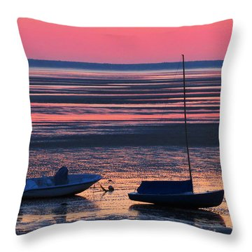 Pink Dawn Throw Pillow by Dianne Cowen