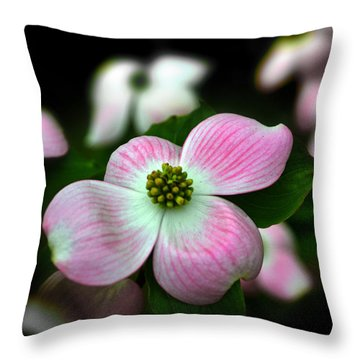 Pink Dogwood 003 Throw Pillow by George Bostian