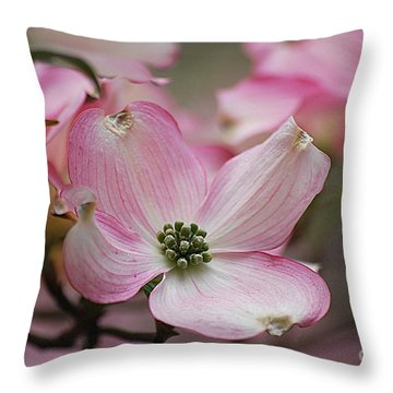 Pink Dogwood 20120415_70a Throw Pillow by Tina Hopkins