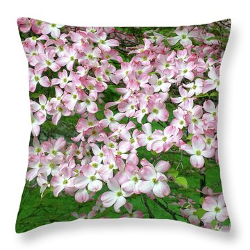 Pink Dogwood Flowers Throw Pillow