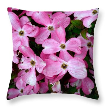 Pink Dogwood Throw Pillow by Karen Molenaar Terrell