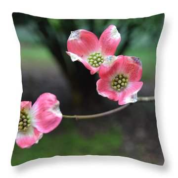 Throw Pillow featuring the photograph Pink Dogwood by Linda Geiger