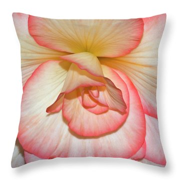 Pink-edged Begonia Throw Pillow