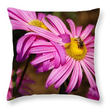 Pink Embrace Throw Pillow by Linda Shafer