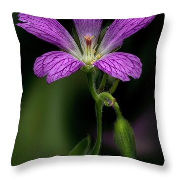 Pink Fantasy Throw Pillow