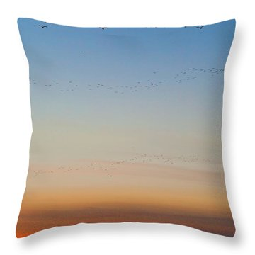 Pink Feet And Fog Throw Pillow