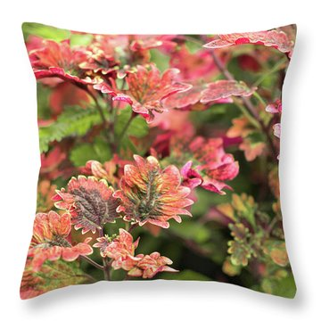 Pink Fine Flora Throw Pillow