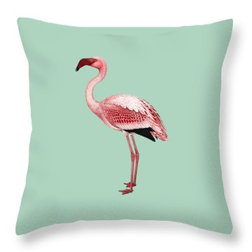 Pink Flamingo Isolated Throw Pillow