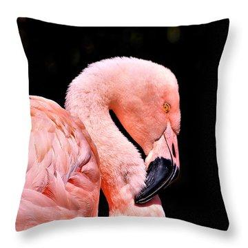 Pink Flamingo On Black Throw Pillow