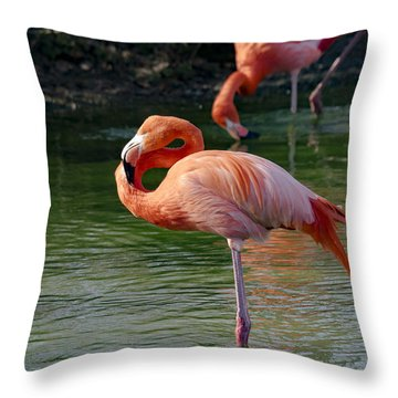 Throw Pillow featuring the photograph Pink Flamingo by Scott Carruthers