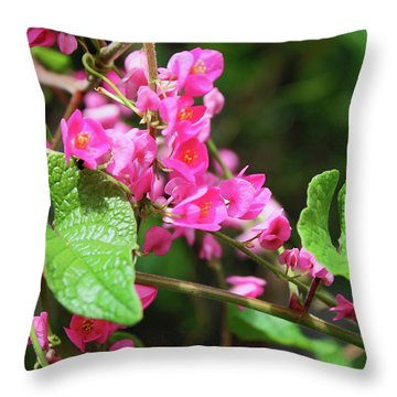 Throw Pillow featuring the photograph Pink Flowering Vine3 by Megan Dirsa-DuBois