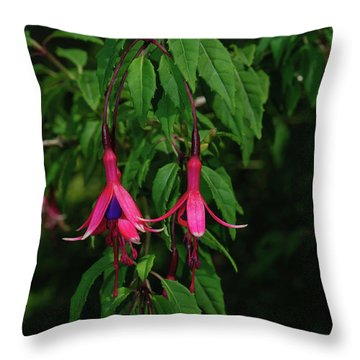 Throw Pillow featuring the photograph Pink Fushia by Tikvah's Hope
