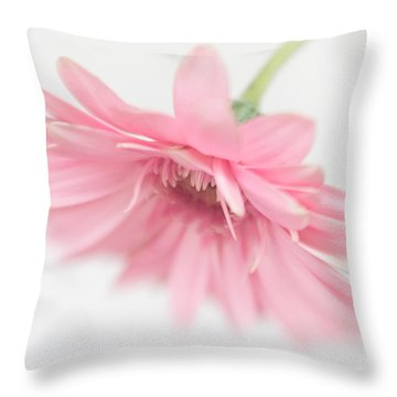Pink Gerbera Daisy II Throw Pillow