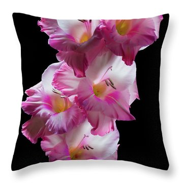 Throw Pillow featuring the photograph Pink Gladiolas On Black  #0146 by David Perry Lawrence
