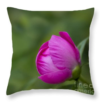 Throw Pillow featuring the photograph Pink Globe by Andrea Silies