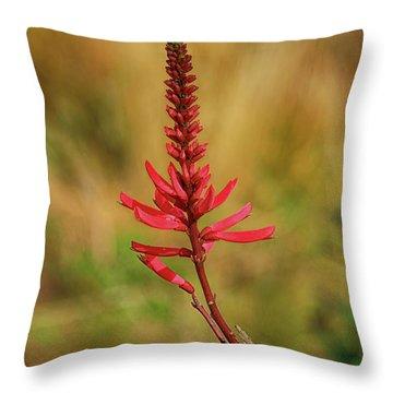 Throw Pillow featuring the photograph Pink Glory by Deborah Benoit