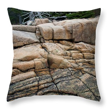 Pink Granite And Driftwood At Schoodic Peninsula In Maine  -4672 Throw Pillow
