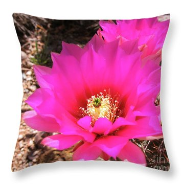Pink Hedgehog Flower Throw Pillow