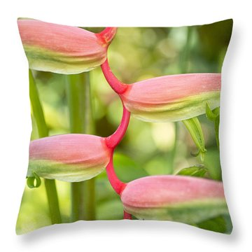 Pink Heliconia Flower Throw Pillow
