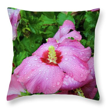 Pink Hibiscus After Rain Throw Pillow by Inspirational Photo Creations Audrey Woods