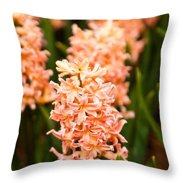 Throw Pillow featuring the photograph Pink Hyacinth by Erin Kohlenberg