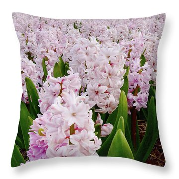 Pink Hyacinth  Throw Pillow by Mihaela Pater
