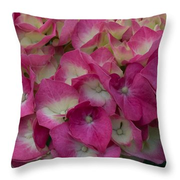 Throw Pillow featuring the photograph Pink Hydrangea by Cathy Donohoue