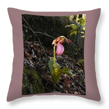Pink Ladies Slipper Throw Pillow