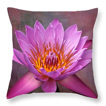 Throw Pillow featuring the photograph Pink Lady by Judy Vincent