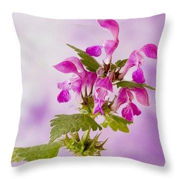 Pink Lamium Macro  Throw Pillow by Sandra Foster