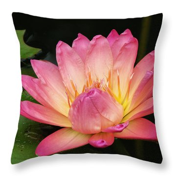 Pink Lily 1 Throw Pillow