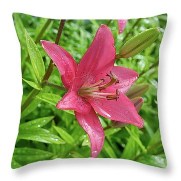 Pink Lily Flowers By Tamara Sushko  Throw Pillow
