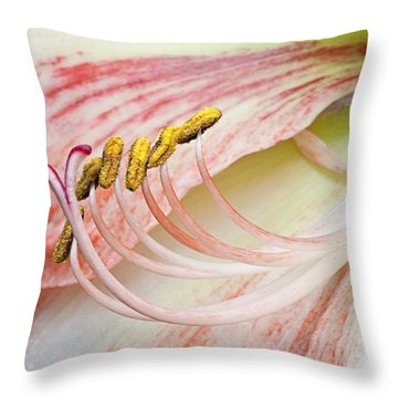 Throw Pillow featuring the photograph Pink Lily Macro by Ken Barrett