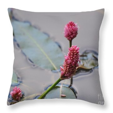 Pink Lily Pad Throw Pillow