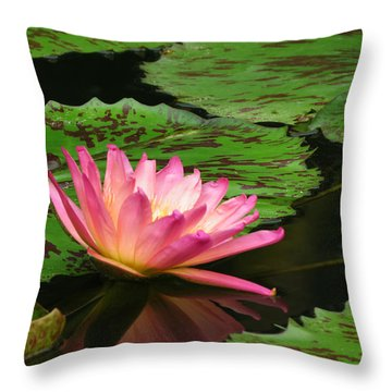 Pink Lily Reflection Throw Pillow