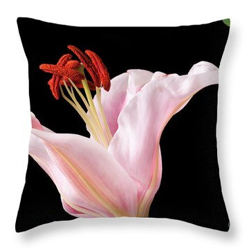 Pink Oriental Lily With Bright Red Pollen Throw Pillow by David Perry Lawrence