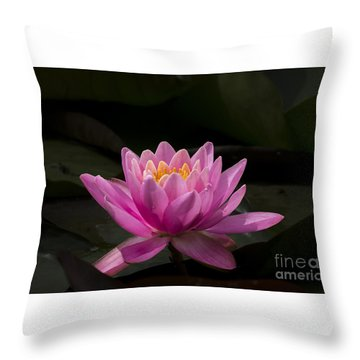Pink Lotus Throw Pillow by Andrea Silies