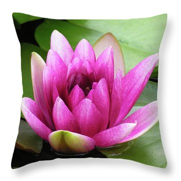 Throw Pillow featuring the photograph Pink Lotus Flower by Betty Denise
