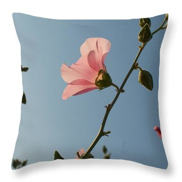 Pink Throw Pillow by Louise Fahy