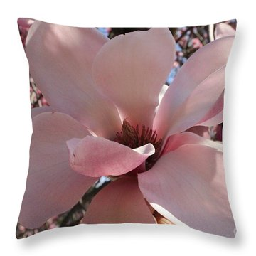 Pink Magnolia In Full Bloom Throw Pillow