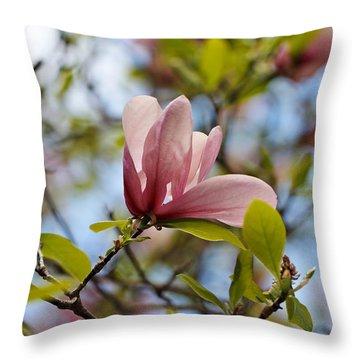Pink Magnolia Throw Pillow by Katherine White