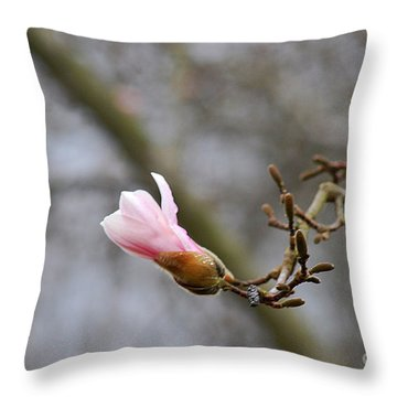 Pink Magnolias 20120321_54a Throw Pillow by Tina Hopkins