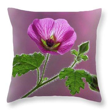 Pink Mallow Flower Throw Pillow