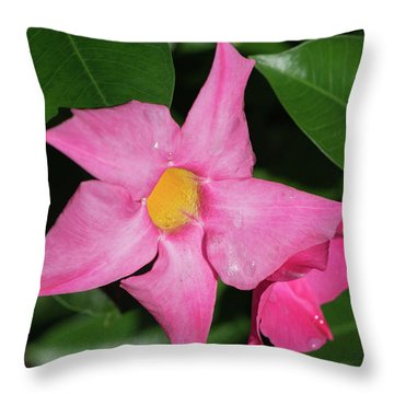 Pink Mandevilla Throw Pillow